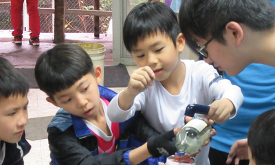 DISCOVERING THE FUN OF SCIENCE WITH PRIMARY STUDENTS